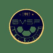Logo BLANC MESNIL SFB